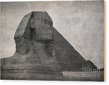 Sphinx Vintage Photo Wood Print by Jane Rix