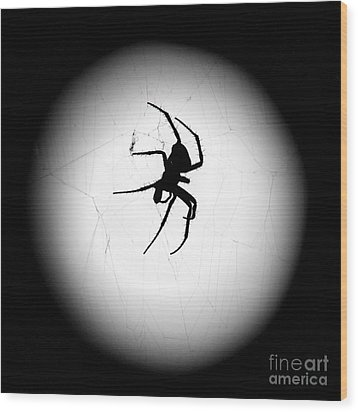 Spider In The Moon Wood Print by Val Armstrong