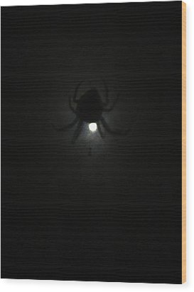 Spider In The Moonlight Wood Print by Kym Backland