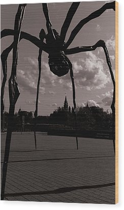 Wood Print featuring the photograph Spider by Josef Pittner