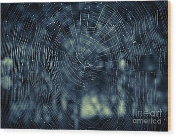 Wood Print featuring the photograph Spider Web by Matt Malloy