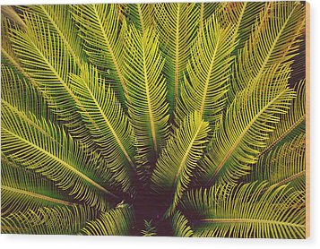 Spiked Leaves Wood Print by Sumit Mehndiratta