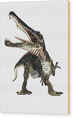 Spinosaurus Dinosaur, Artwork Wood Print by Animate4.comscience Photo Libary