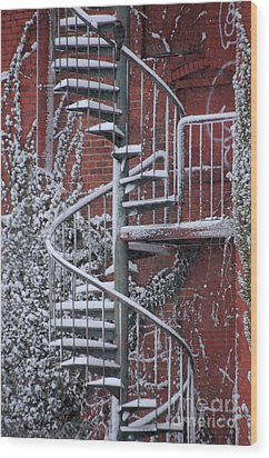 Spiral Staircase With Snow And Cooper's Hawk Wood Print