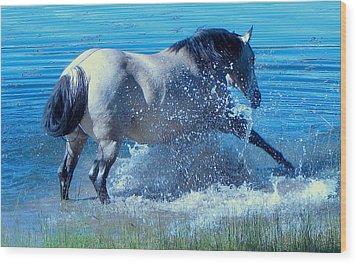 Splashing Horse Wood Print by FeVa  Fotos