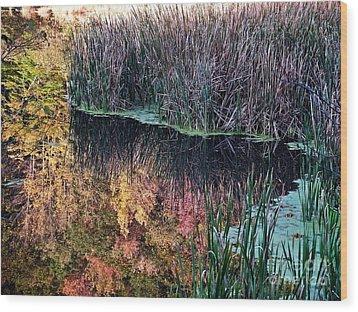 Splendor In The Grass Wood Print by Christian Mattison