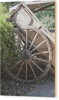 Spoked Wood Print by Carole Hinding