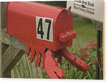 Sponge Bob's Mail Box  Wood Print by Paul Mangold