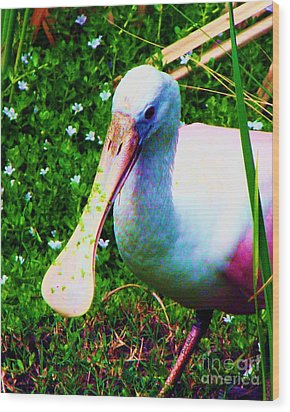 Spoonbill Number One Wood Print by Doris Wood