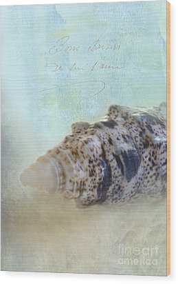 Spotted Auger Seashell Wood Print by Betty LaRue