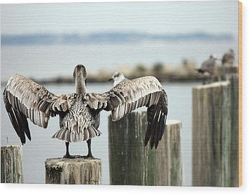 Spread Your Wings Wood Print by Deborah Hughes
