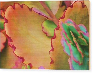 Spring 2 Wood Print by Dawn Nicoli