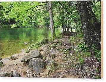 Spring Along Cranberry River Wood Print by Thomas R Fletcher