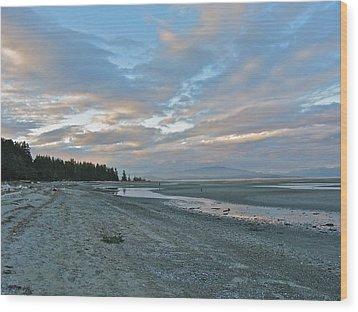 Wood Print featuring the photograph Spring Beach by Brian Sereda