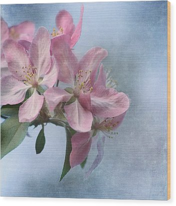 Spring Blossoms For The Cure Wood Print by Kim Hojnacki