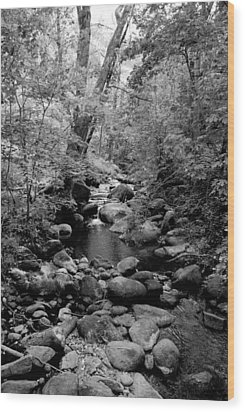 Wood Print featuring the photograph Spring Creek by Kathleen Grace