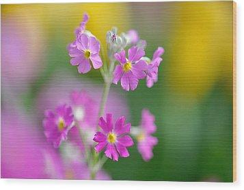 Spring Flower Wood Print by Myu-myu