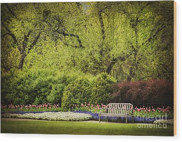 Spring Garden Wood Print by Cheryl Davis