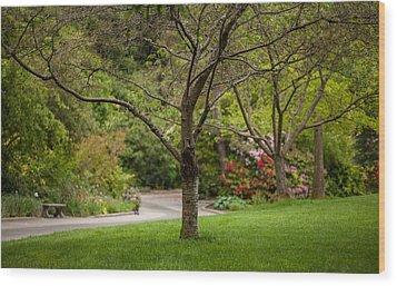 Spring Garden Landscape Wood Print by Mike Reid