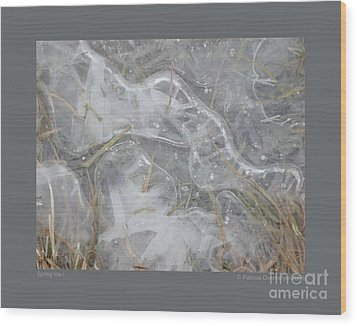 Wood Print featuring the photograph Spring Ice-i by Patricia Overmoyer