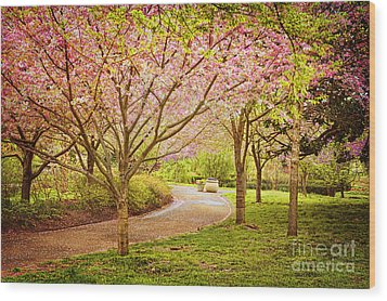 Wood Print featuring the photograph Spring In The Park by Cheryl Davis