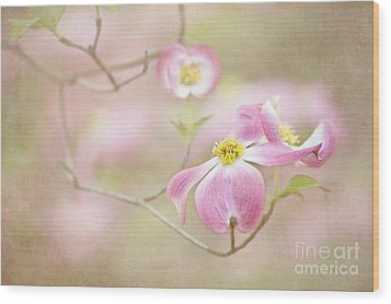 Spring Inspiration Wood Print by Cheryl Davis
