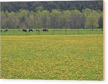 Spring Meadow Flowers Wood Print by John Stephens