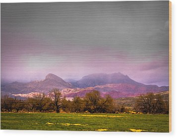 Spring Mountain Ranch In Red Rock Canyon Wood Print by David Patterson