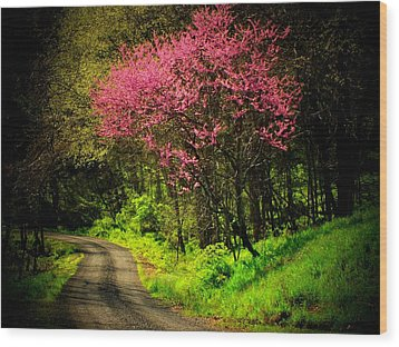 Spring Mountain Road Wood Print by Michael L Kimble