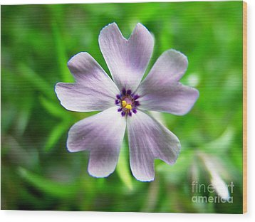 Wood Print featuring the photograph Spring Purple by Thanh Tran