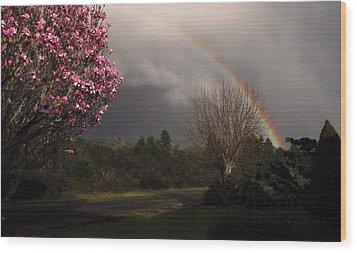 Spring Rainbow Wood Print