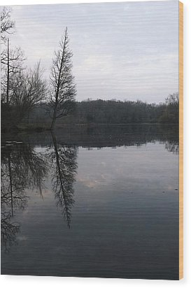 Wood Print featuring the photograph Spring Reflection  by Gerald Strine
