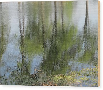 Spring Reflections Wood Print by Valia Bradshaw