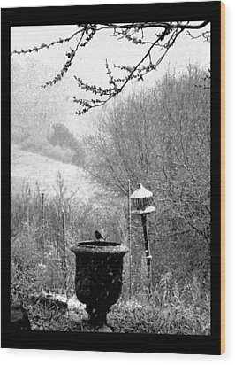 Wood Print featuring the photograph Spring Snowstorm 2012 by Susanne Still
