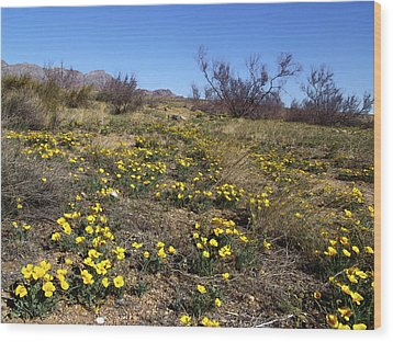 Spring Surprise Franklin Mountains Wood Print by Kurt Van Wagner