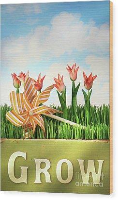 Springtime Fun Wood Print by Sandra Cunningham