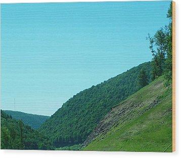 Springtime In Penna.mountains Wood Print