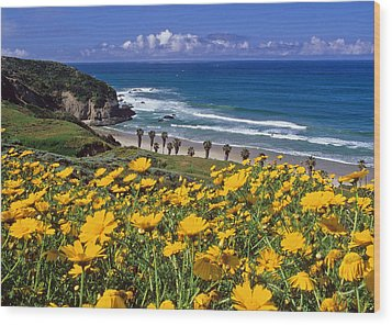 Springtime On The Headlands Wood Print