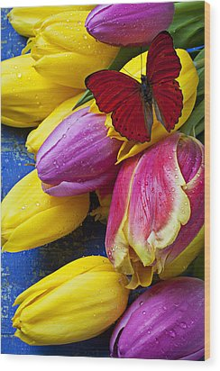 Springtime Tulips And Red Butterfly Wood Print by Garry Gay