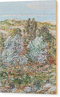 Springtime Vision Wood Print by Childe Hassam