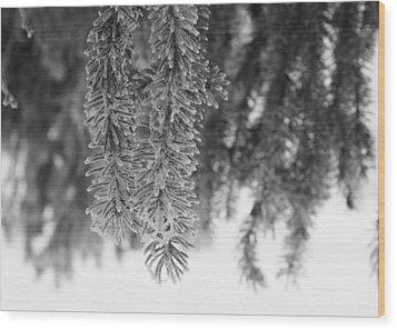 Spruce Wood Print by Ellery Russell