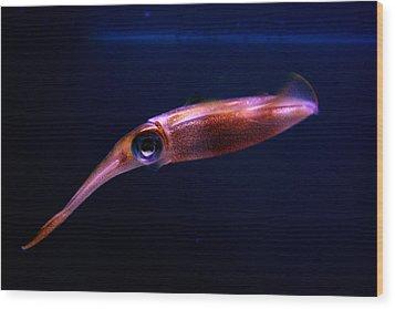 Squid In Pink Wood Print