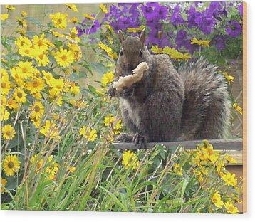 Squirrel   Wood Print by Amalia Jonas