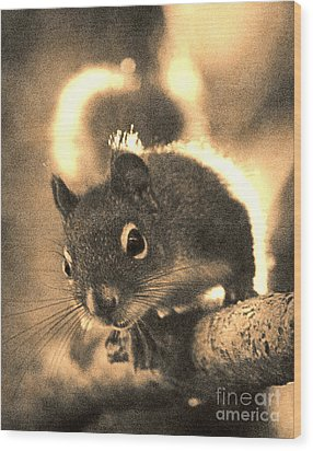 Squirrel In Sepia Wood Print by Janeen Wassink Searles