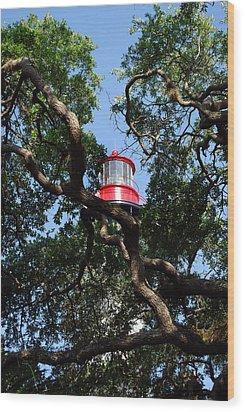 St Augustine Tree House Wood Print by Skip Willits