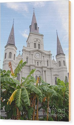 St Louis Cathedral Rising Above Palms Jackson Square French Quarter New Orleans Print  Wood Print by Shawn O'Brien