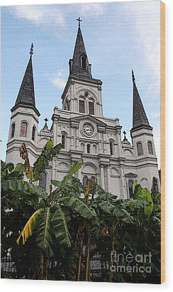St Louis Cathedral Rising Above Palms Jackson Square New Orleans Fresco Digital Art Wood Print by Shawn O'Brien