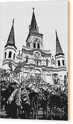 St Louis Cathedral Rising Above Palms Jackson Square New Orleans Stamp Digital Art Wood Print by Shawn O'Brien