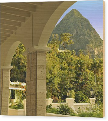 St. Lucia Mountain View Wood Print by Cindy Lee Longhini