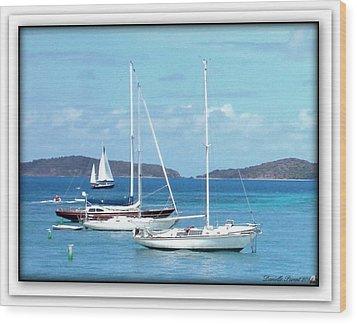 Wood Print featuring the photograph St-thomas Virgin Islands Trio by Danielle  Parent
